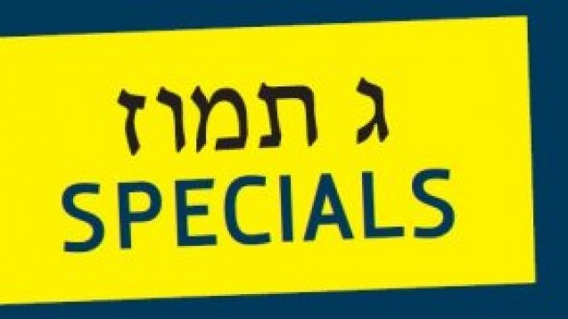 Check your Tefillin for only $45!
