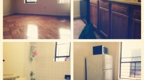 Crown Heights: Great apartment in great location